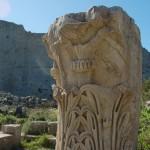 Escursione - Noto Antica e visita a Noto xx
