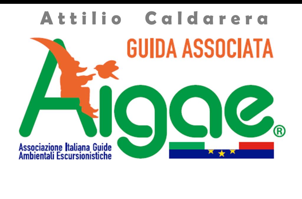 attilio Caldarera AIGAE Sicilia